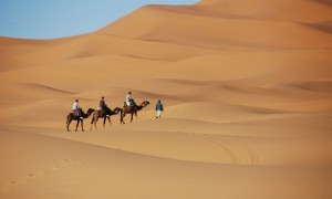 desert-1914052_960_720