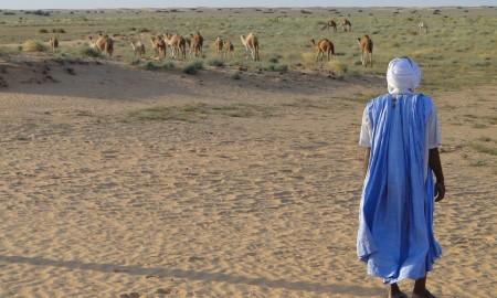 desert-733728_960_720